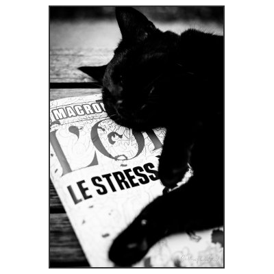 Photographie Le stress... (sans description)