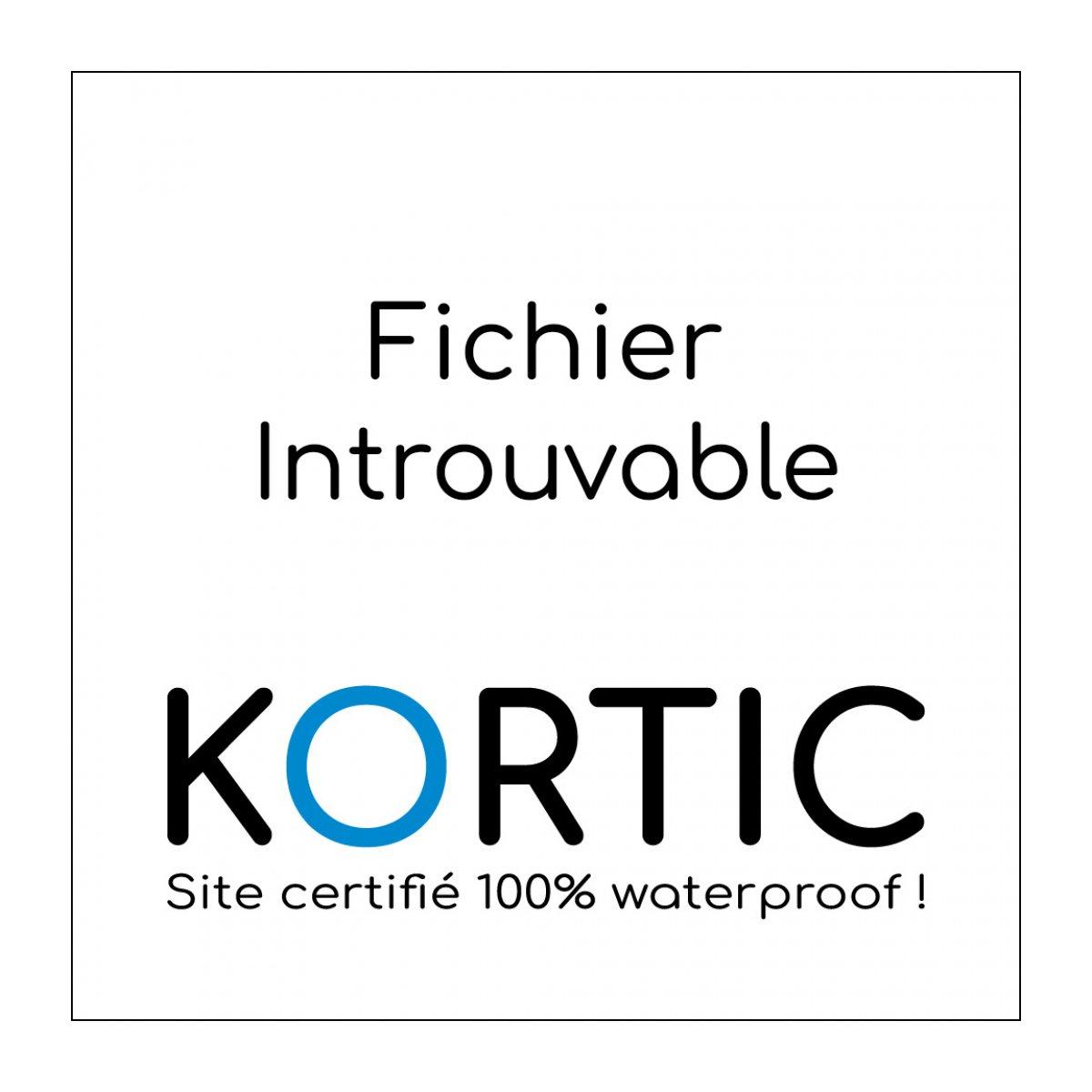 un fumigène incandescent brûle devant des CRS à l'arrière d'une barricade